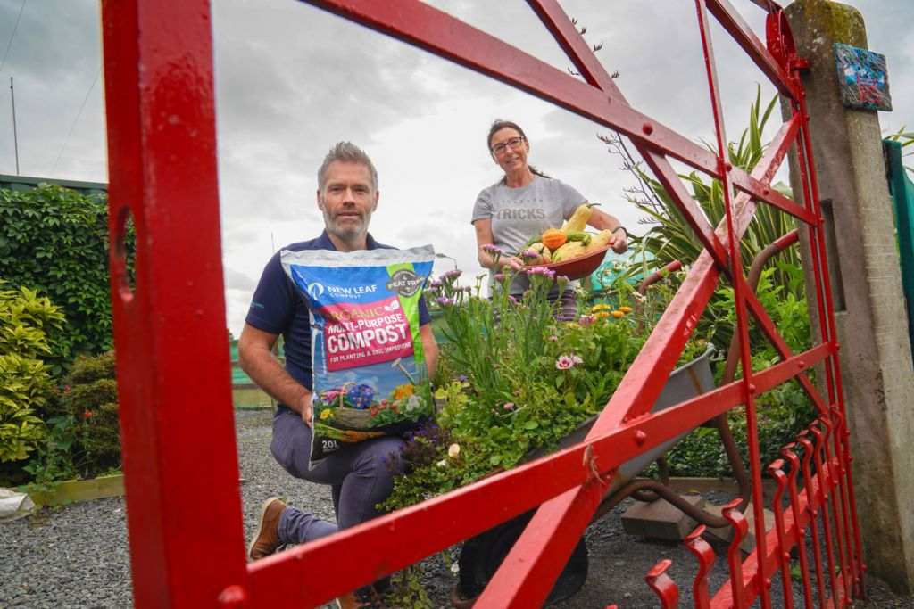 NWP helps breathe new life into Lisburn therapy garden